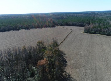 Bethea Tract field